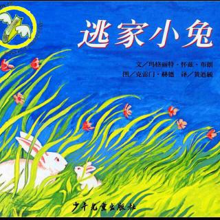 菠萝姐姐讲故事:逃家小兔