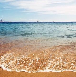走进海里看一看