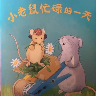 【故事72】《小老鼠忙碌的一天》