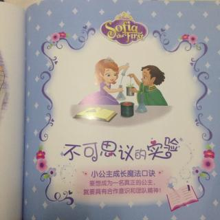 小公主苏菲亚故事系列:9、公主的荣誉勋章(下)