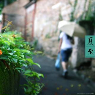 【二十四节气】夏至