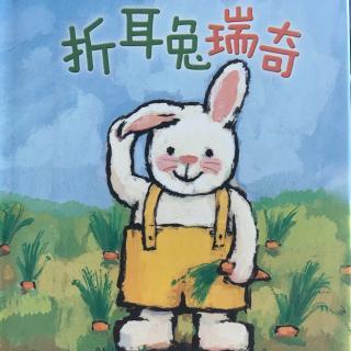 《折耳兔》系列之 折耳兔瑞奇