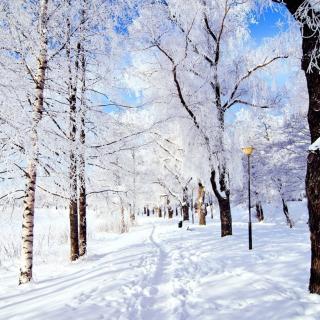 英语故事《飘过童年的雪 Snowfall in Childhood》