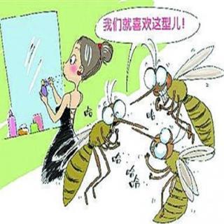 天下新知:关于谁更招蚊子,到底谁对谁错