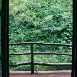 英语散文《窗外的风景 the View Outside My Window》