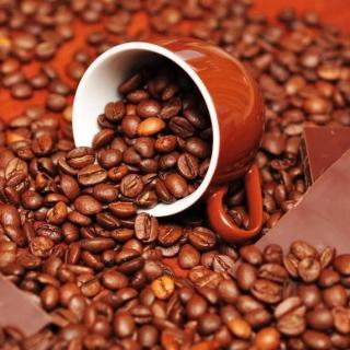 2.咖啡的栽培条件