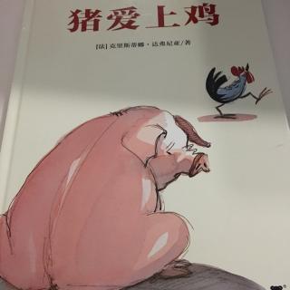 猪爱上鸡🐔