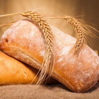【我变成了一块面包】猎奇向睡前故事