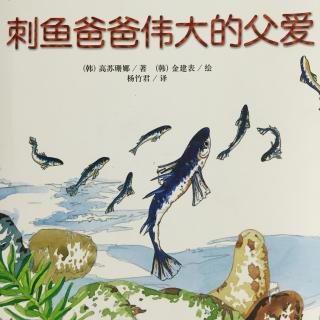 自然科学童话-刺鱼爸爸伟大的父爱
