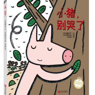 宫西达也绘本故事:小猪,别哭了