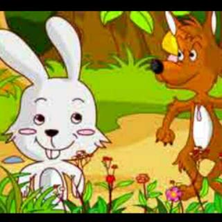 小白兔和大灰狼🐰