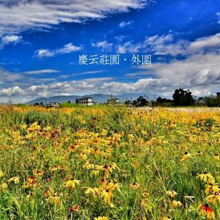 诗和远方#相约丽江