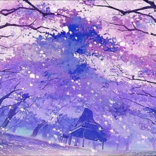 「夜空繁星下 片片樱吹雪 钢琴纯音三首」