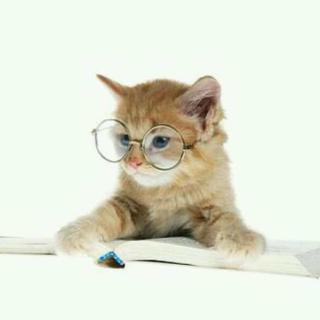 创可贴和风油精#我是读书人#