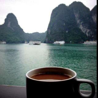 清晨的粥比深夜的酒好喝,骗你的人比爱你的人会说