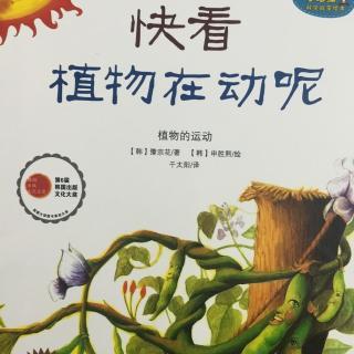 小海绵科学启蒙绘本(快看植物在动呢)