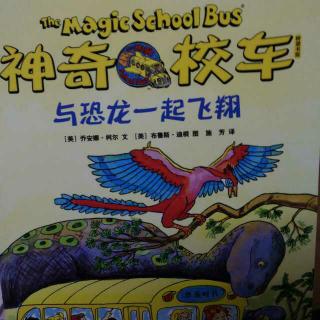 神奇校车~与恐龙一起飞翔8