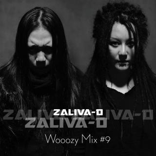 Wooozy Mix # 9 —  Zaliva-D