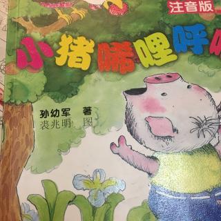 小猪唏哩呼噜之 卖橘子闯了祸
