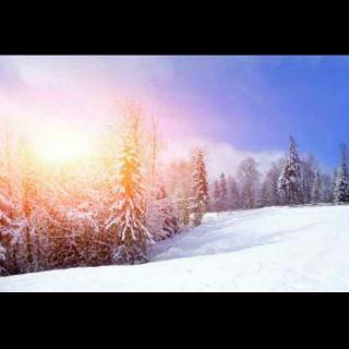 冬日里的温暖