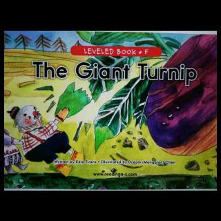 The Giant Turnip 大萝卜(英文版拔萝卜)