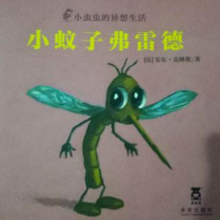 小虫虫的异想生活-小蚊子弗雷德