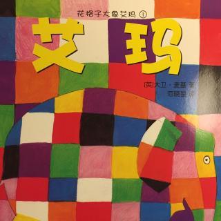 花格子大象1艾玛