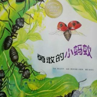 【园长妈妈讲故事20】勇敢的小蚂蚁 欢迎收听