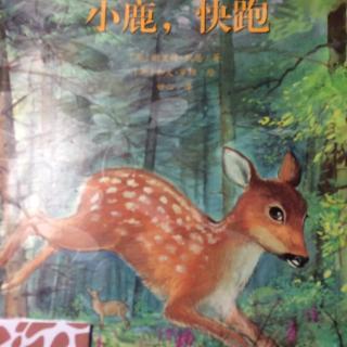 小鹿,快跑