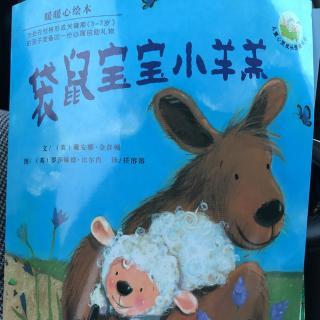 北京王子岛英语幼儿园jerry班刘雨析爸爸讲的故事-袋鼠宝宝小羊羔