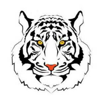 吃阳光的老虎