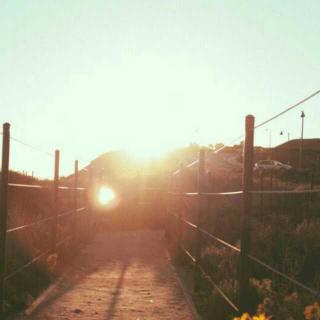 你的孤独像太阳