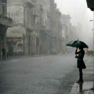 余光中《等你,在雨中》