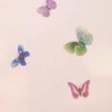 美丽的蝴蝶🦋
