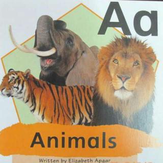 机灵狗StageABC Aa  Animals