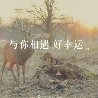 生命中最难的,是你不懂自己。