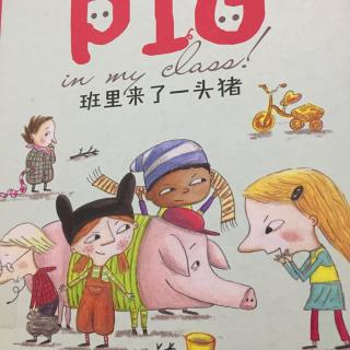 班里来了一只猪