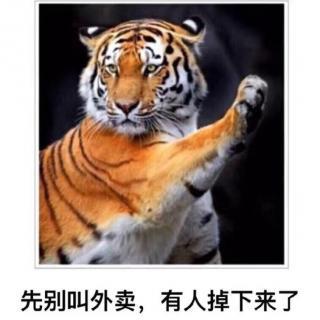 老虎是什么意思_明知山有虎,偏向虎山行是什么意思-人文