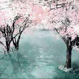 唐诗四首(咏鹅、春晓、相思、春夜喜雨)