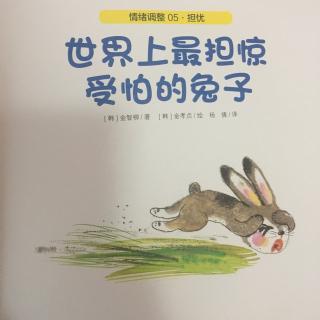 世上最担惊受怕的兔子