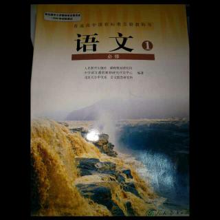 高中语文第三册第六课《琵琶行》