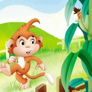 绘本故事3《小猴🐵掰玉米》