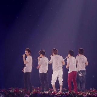 20170511 ARASHI Live Tour 2013 LOVE 演唱会