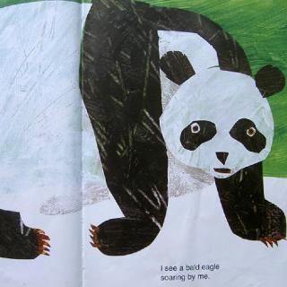 大熊猫,大熊猫,你在看什么Panda Bear, Panda Bear, What Do You See