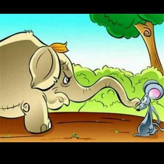 小老鼠吃大象