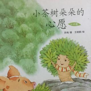 睡前故事193-《小茶树朵朵的心愿》