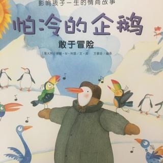 小熊晚安故事| No.17 怕冷的企鹅皮皮