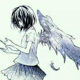 放飞梦想的翅膀