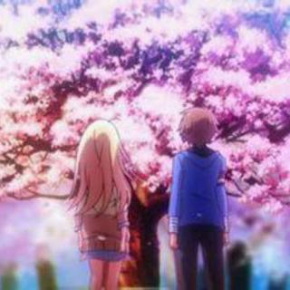 我在樱花树下等你,直到你回来。