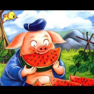 园长妈妈讲故事 猪八戒吃西瓜